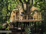 HIŠA NA DREVESU, »The Woodman's Treehouse«